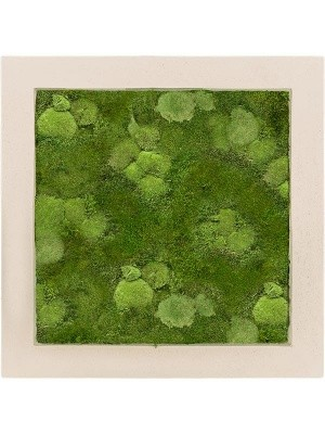 Картина из мха polystone natural 30% ball- and 70% flat moss L50 W50 H5 см CMSS00612