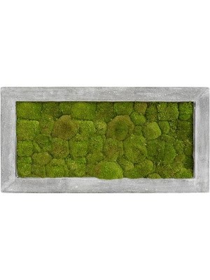Картина из мха polystone raw grey 100% ball moss L100 W50 H5 см CMSS00242